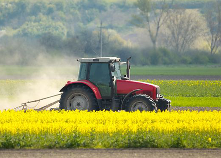 rural-sector