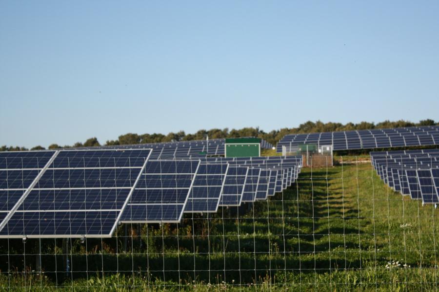 Budby solar farm Roadnight Taylor