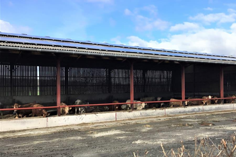 clive gurney solar array